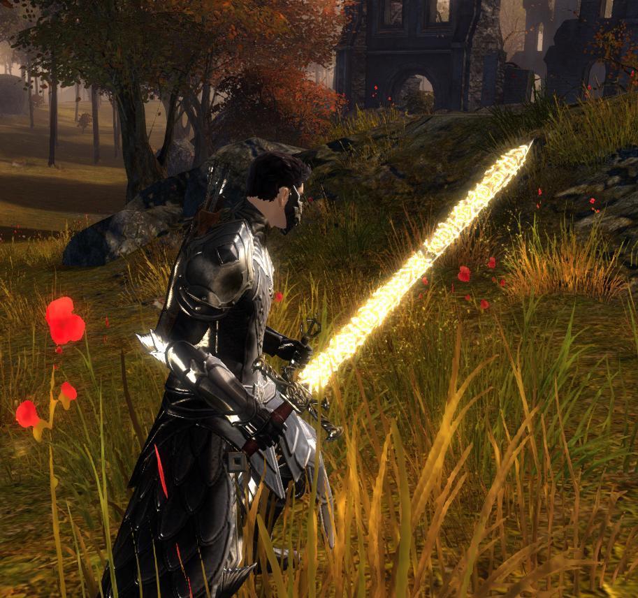 guild wars 2 hack